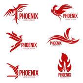 Fényképek Meg a stilizált grafikus Főnix madár logo sablonok, vektoros illusztráció