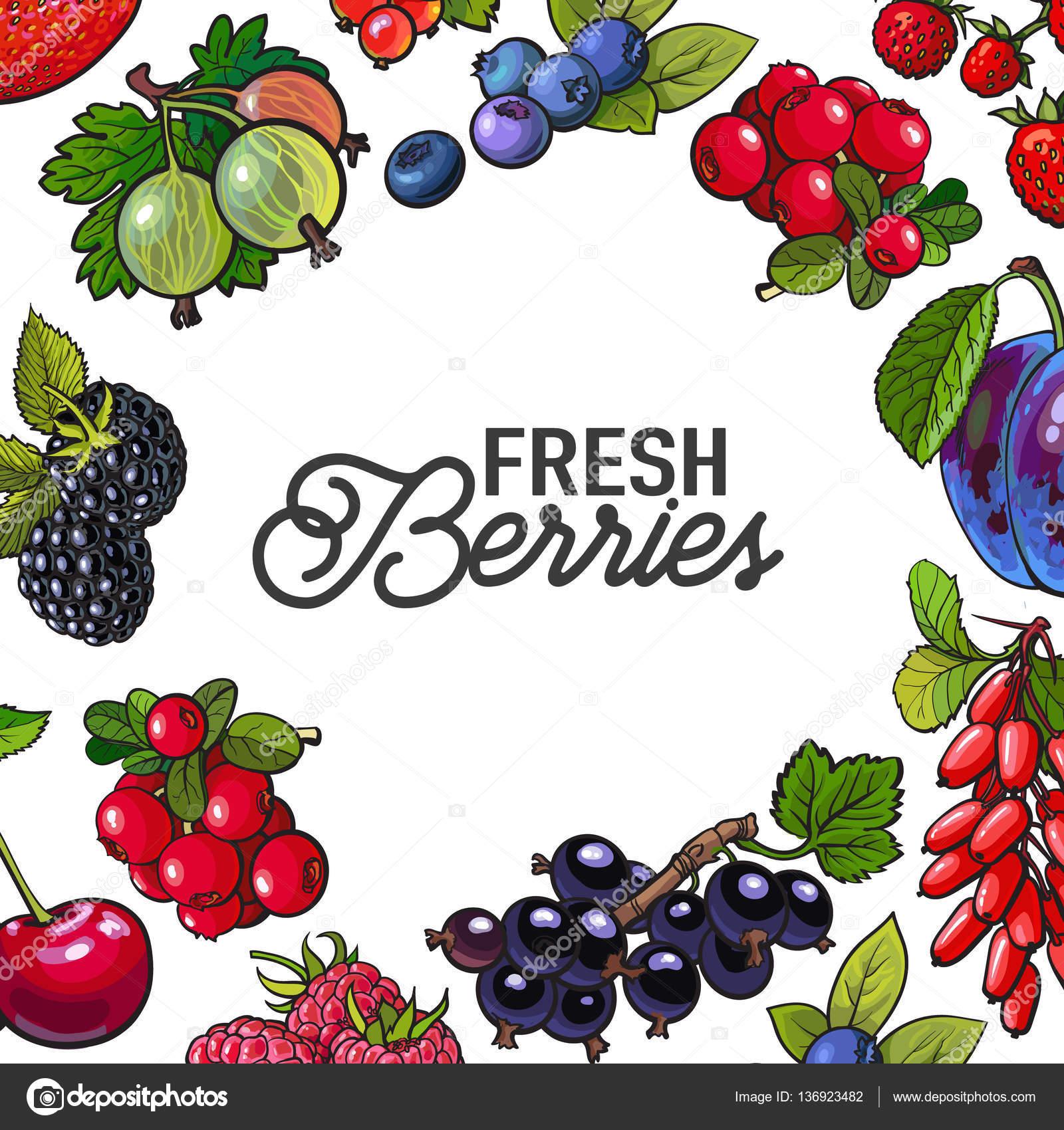 Marco de jardín frutas con ronda de lugar para el texto dentro de ...
