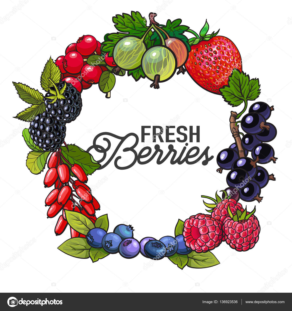 Marco redondo de frutas jardín con lugar para el texto dentro de ...
