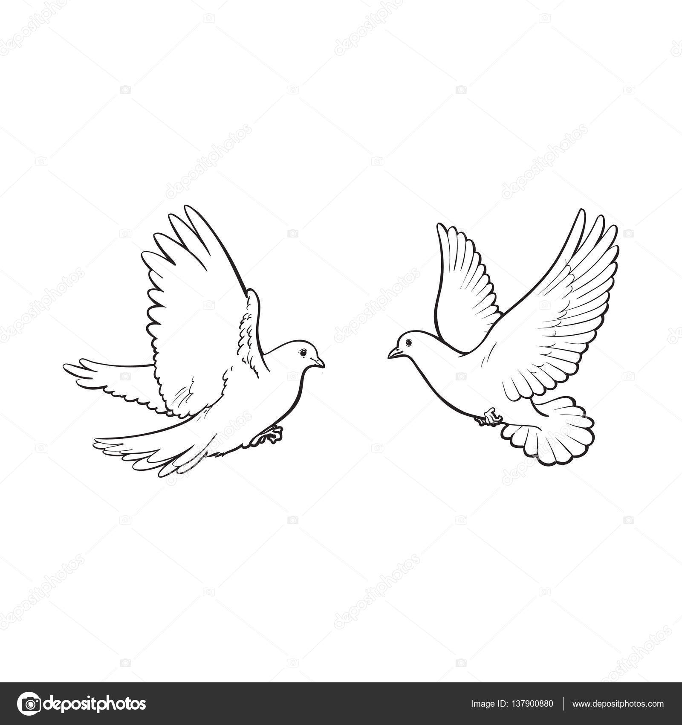2 doves bahai dating site