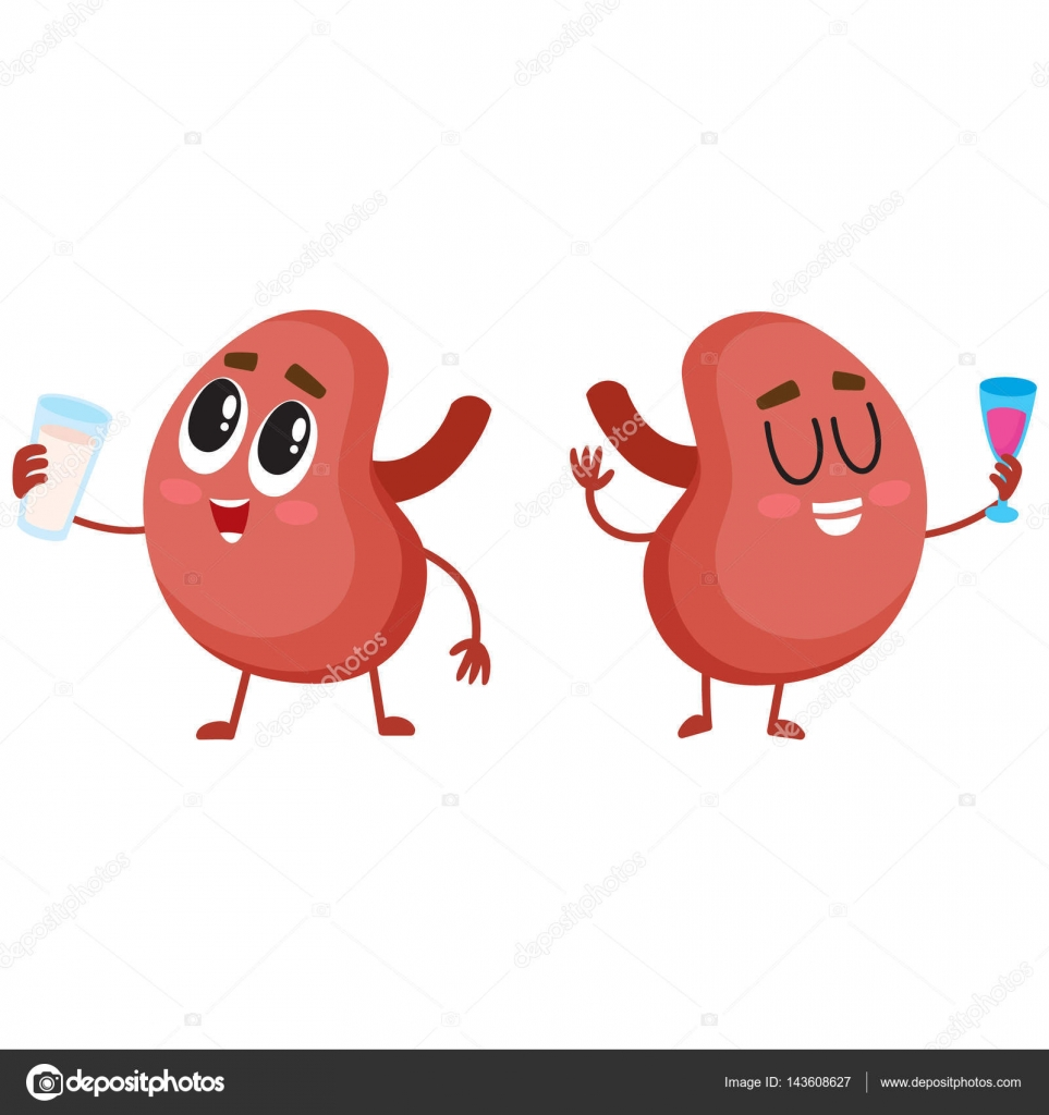 Nette und lustige gesunde menschliche Niere Zeichenpaar ...