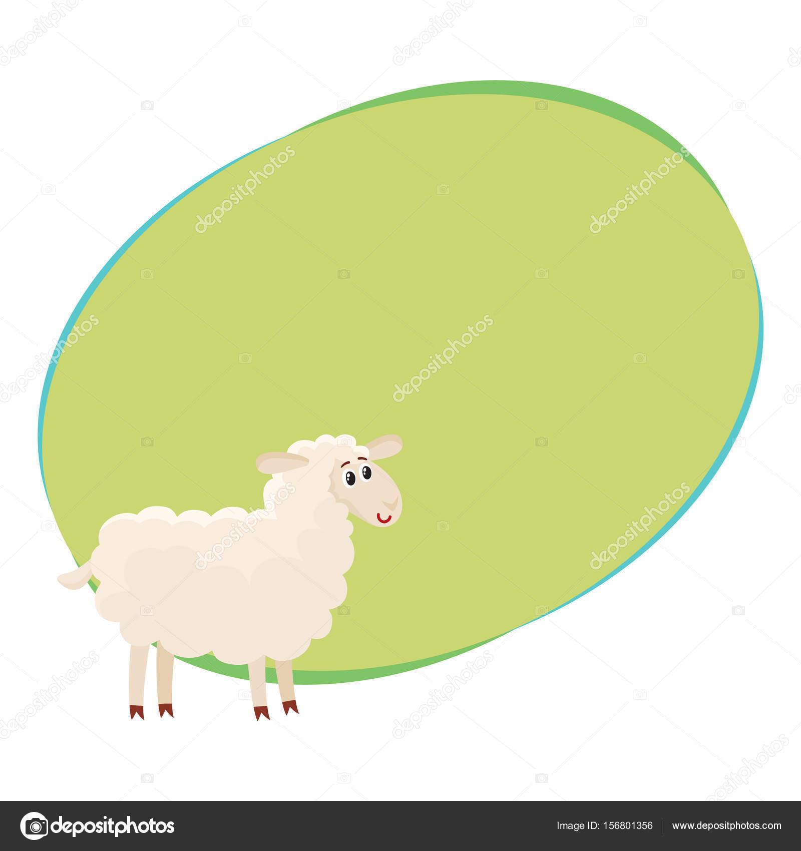 Bien gromed oveja esponjosa, cordero con ojos grandes, vector ...