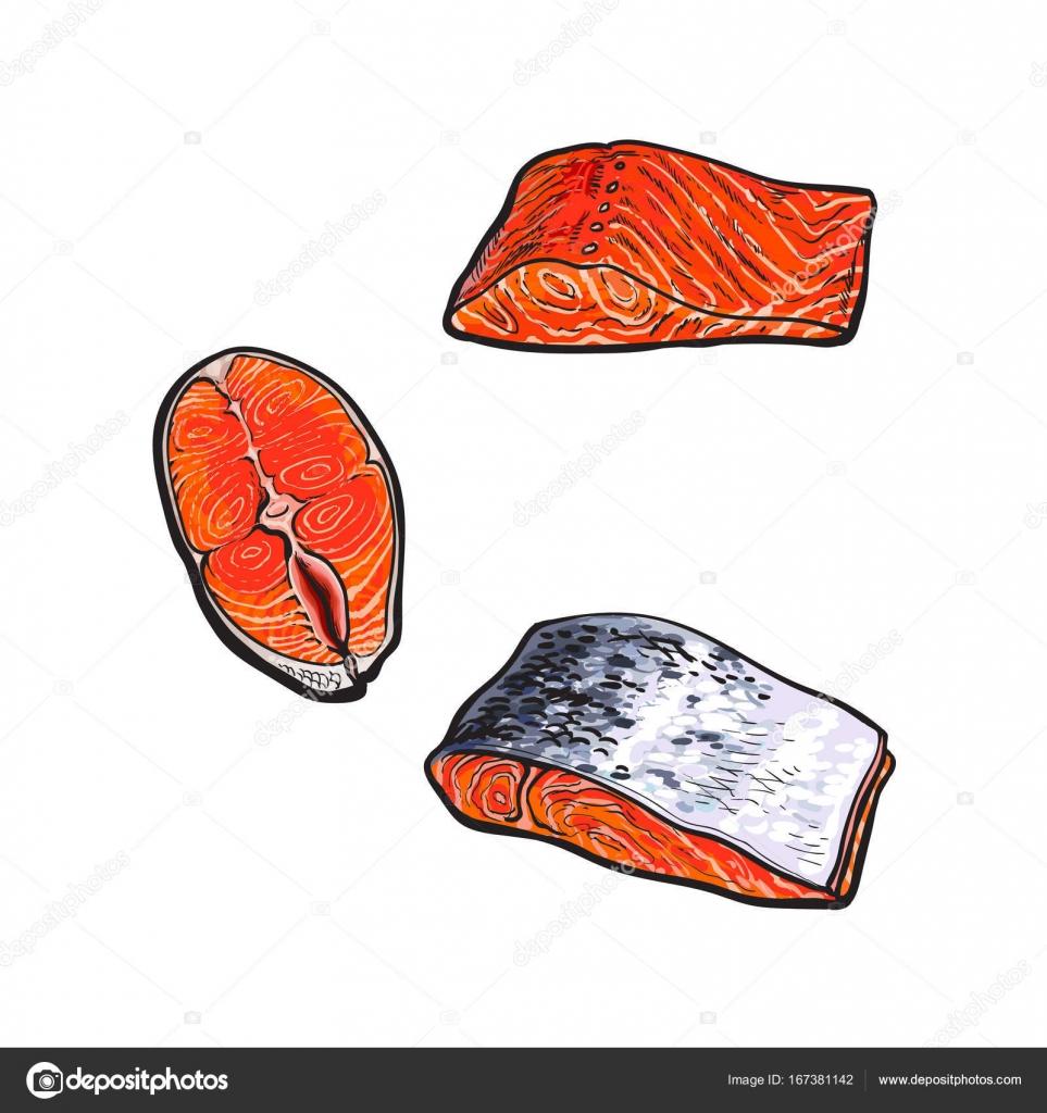 Dibujos Carnes Y Pescados Vector Mar Rojo Salmón Pescado Carne