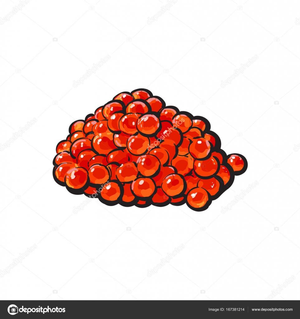 Vector Sketch Cartoon Red Salmon Caviar Stock Vector C Sabelskaya