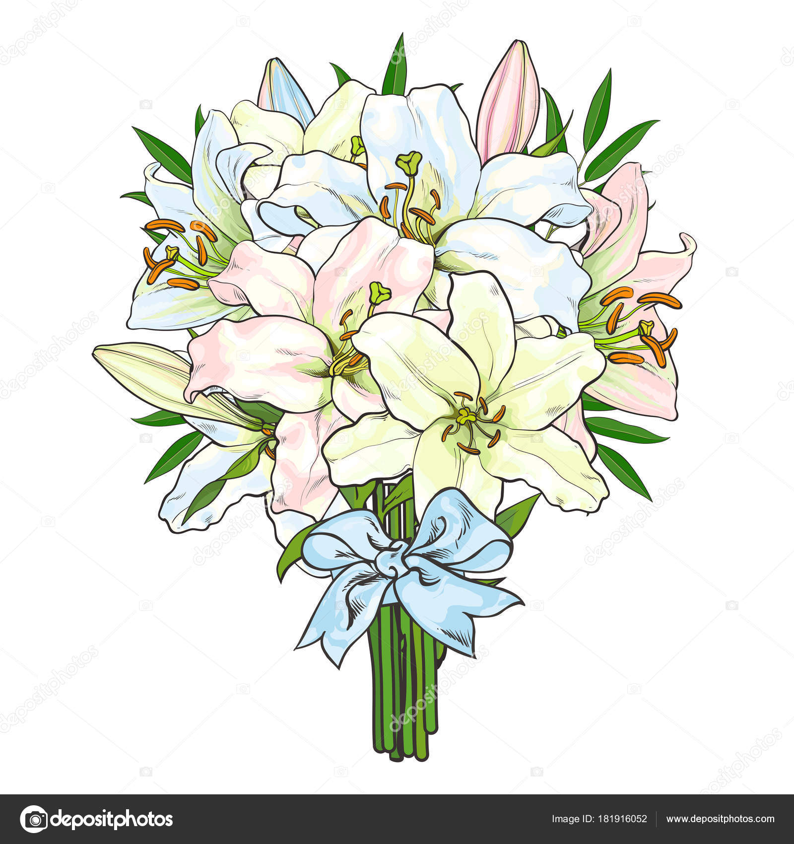 Bouquet, bunch of lily flowers tied with ribbon — Stock Vector ...