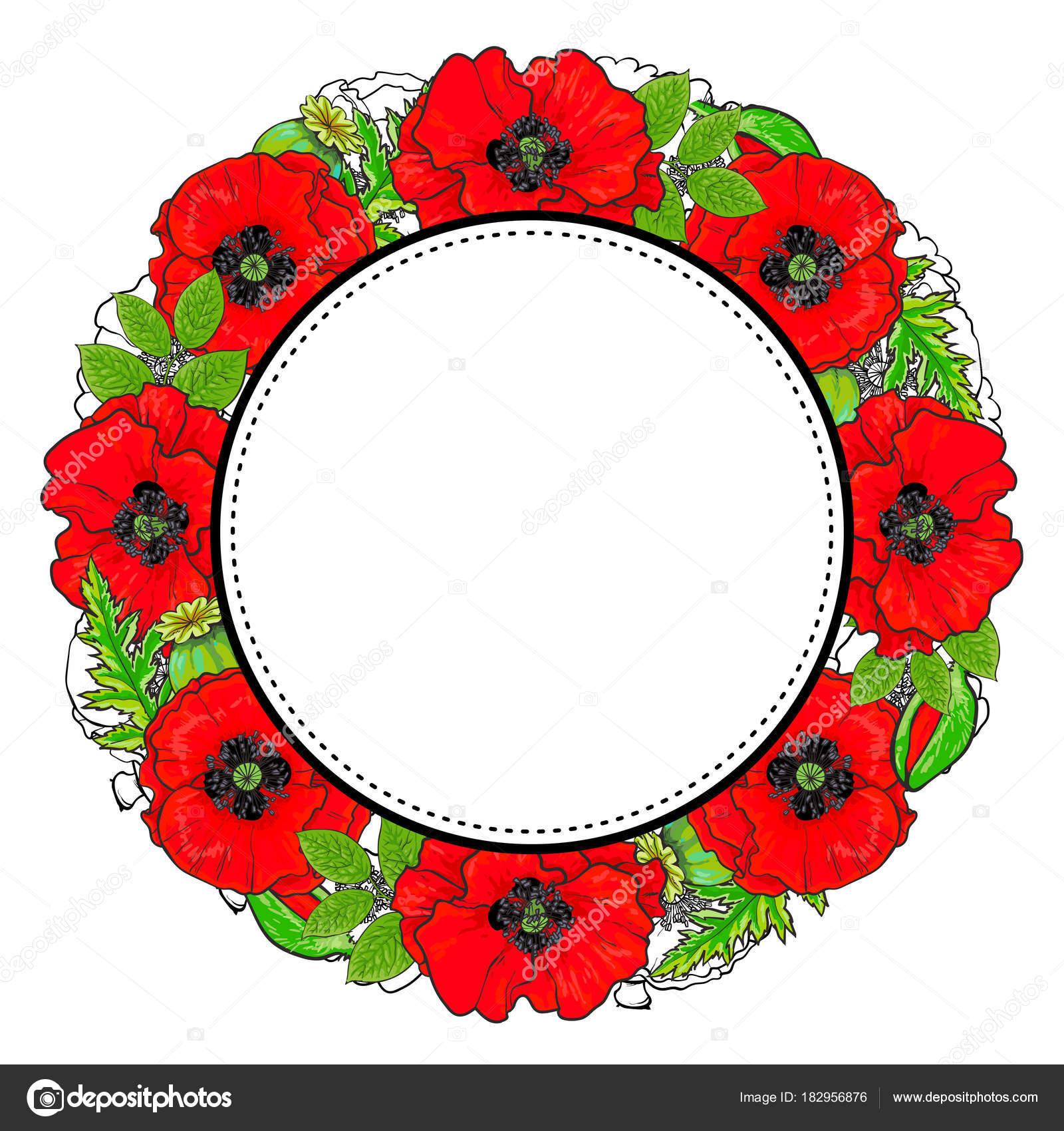 Marco redondo de flores de amapola rojos y hojas verdes — Vector de ...