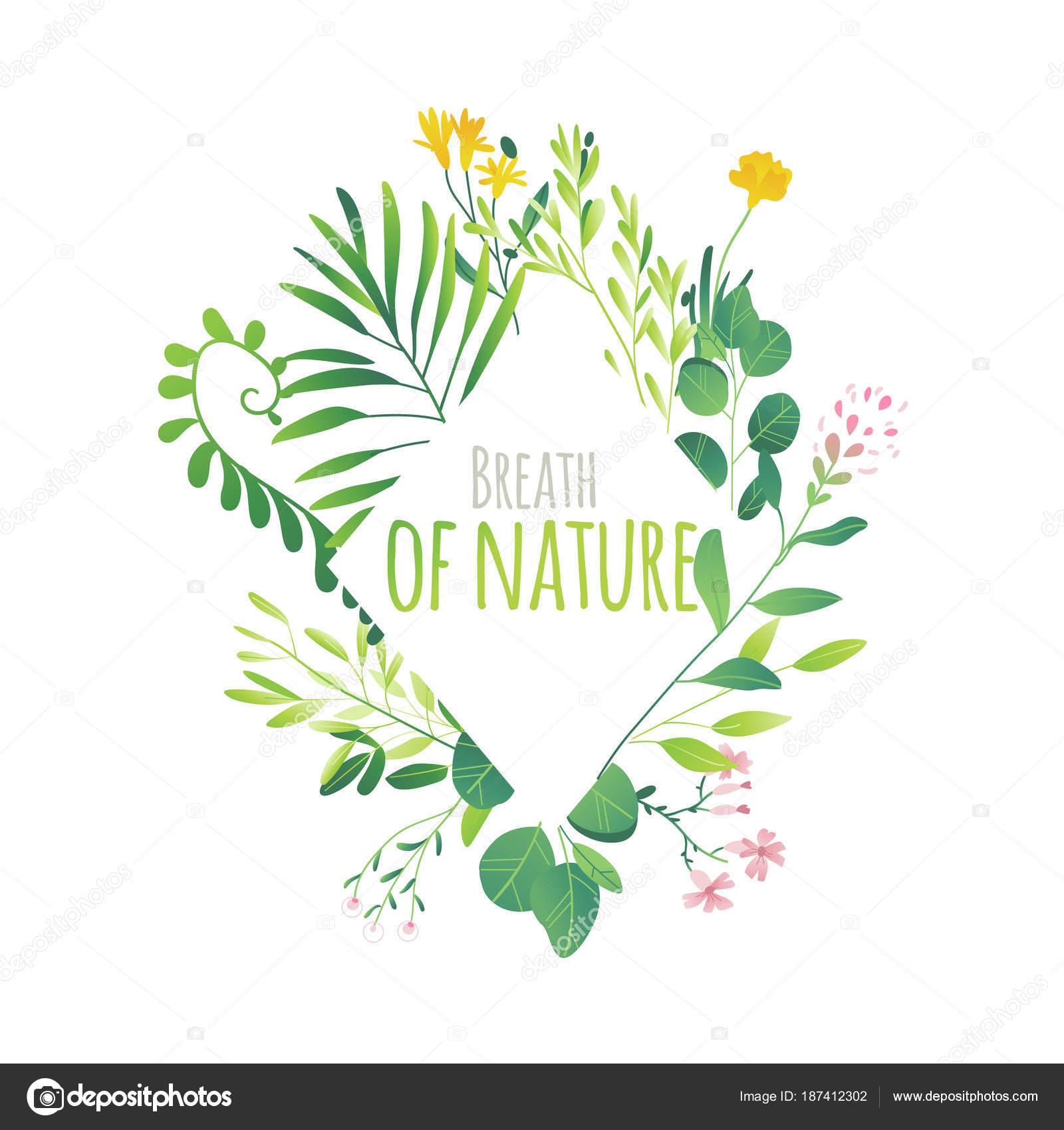 Marco de hojas verdes, flores, ramas de diamante — Vector de stock ...