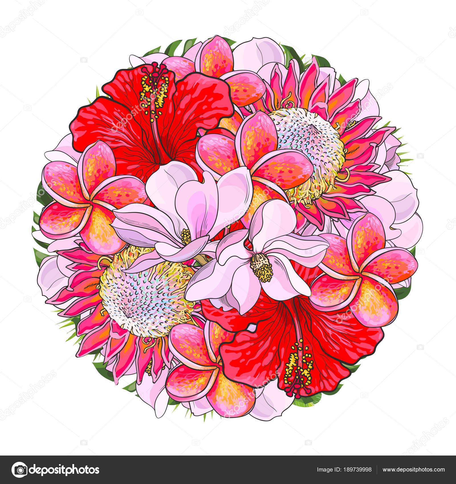Tropical flowers in bouquet of sphere shape isolated on white tropical flowers in bouquet of sphere shape isolated on white background stock vector izmirmasajfo