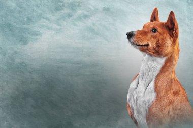 Drawing dog breed Basenji