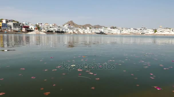 Floating flowers on the holy water pond in Pushkar, Rajasthan, India, sacred town for hindu people.