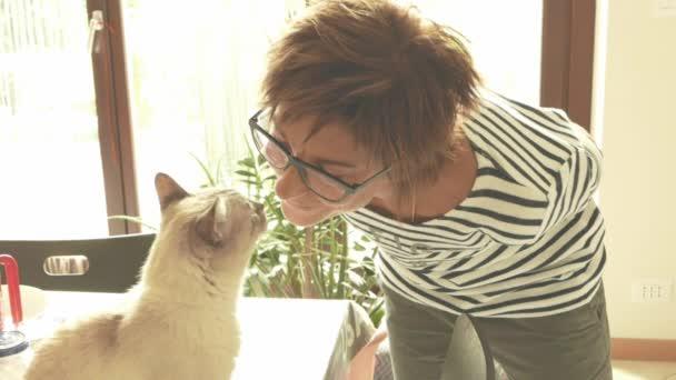 Binnenlandse kat spelen op de schouder van lachende mooie vrouw ...