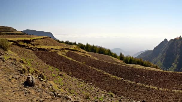 Panorama on terraced landscape, agriculture in Ethiopia, Africa