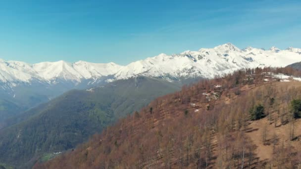 Aerial: drone flying over forest in springtime, aerial view of snow capped mountain range and valley on the Alps, clear blue sky, Turin, Italy.