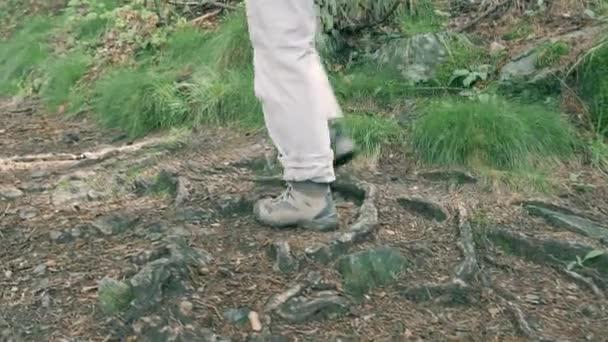 Turistika na chodník uvnitř lesa, Detailní záběr na nohy a chodidla, filmový vzhled laděných video