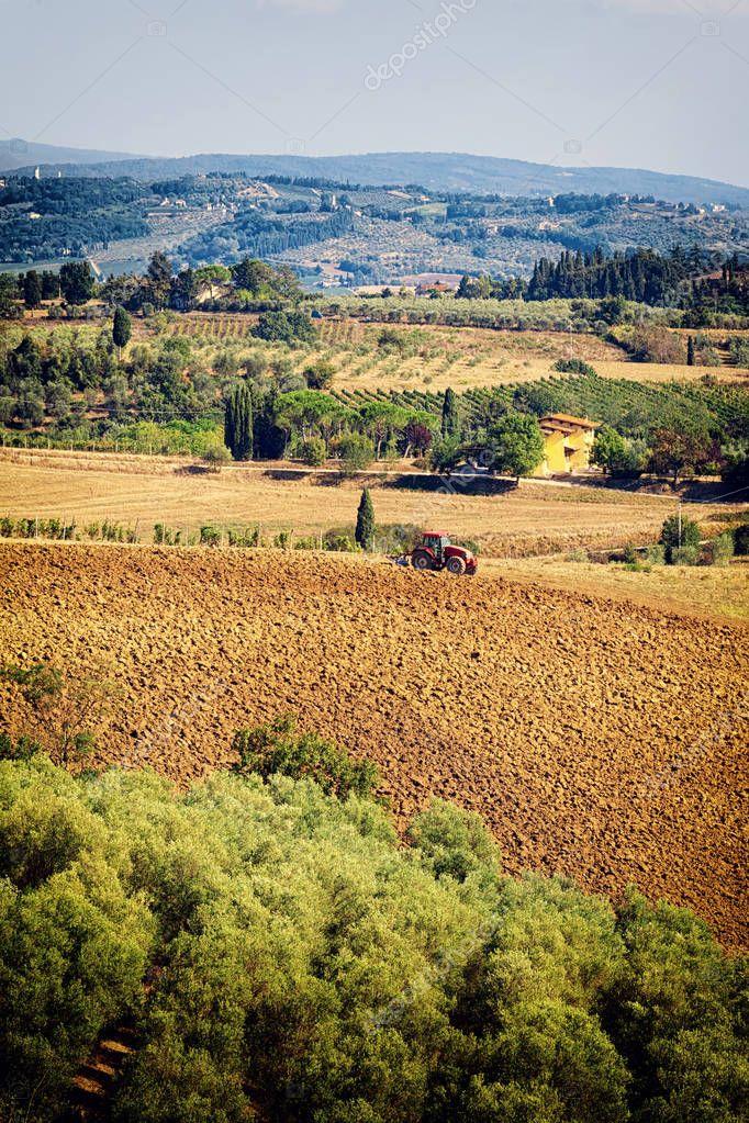 Paesaggio di tipica collina toscana con vigneto oliveto e for Piani di serra in collina