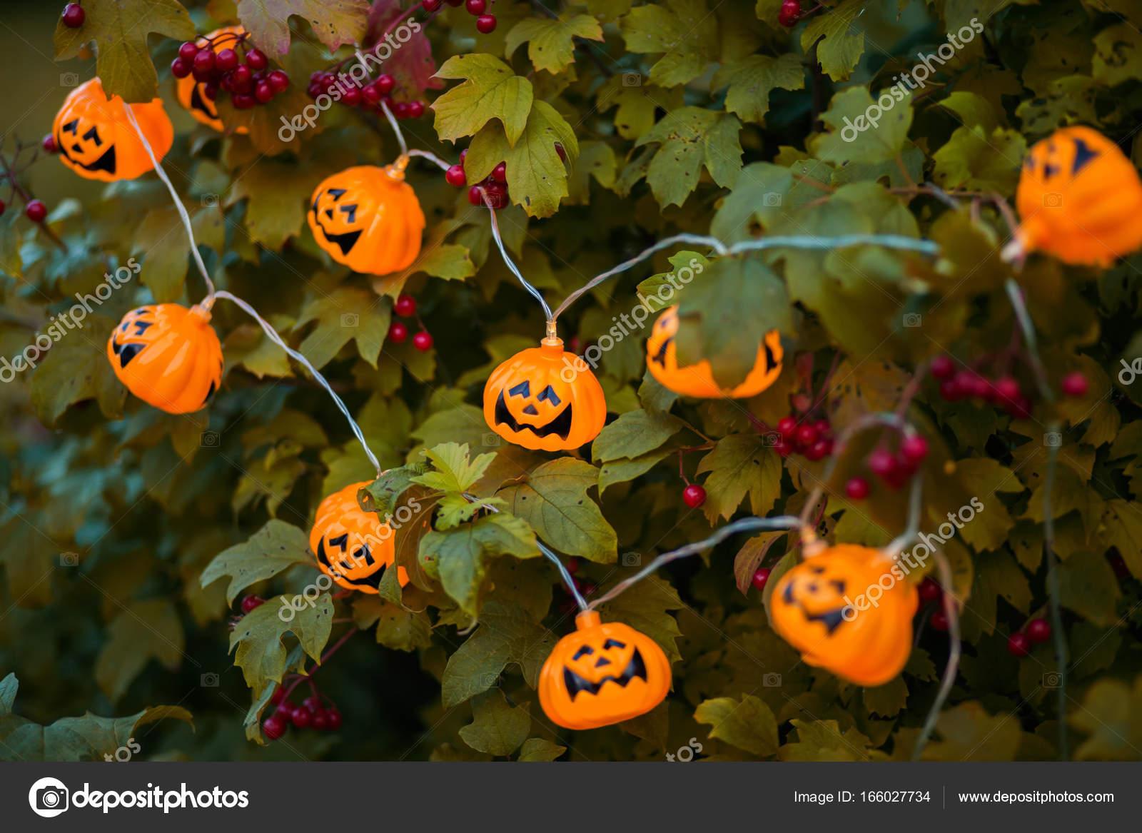 Halloween Decoratie Voor Buiten.Halloween Decoratie Buiten Stockfoto C Alinsssa 166027734