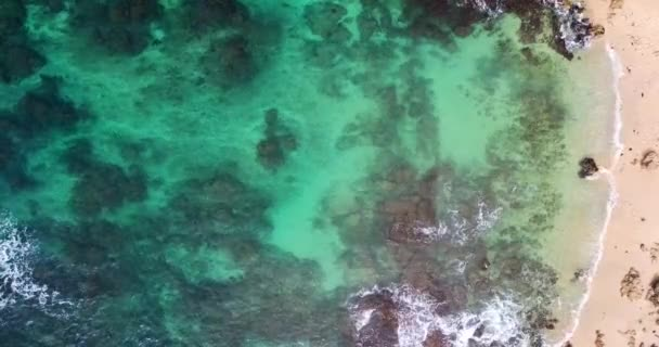 aerial view. view of the waves in the Indian ocean. Wild Beach. Sri-lanka.