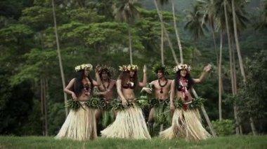 hula dancers performing outdoor