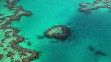 Heart Island, Great Barrier Reef