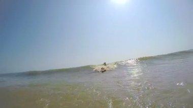 man enjoying surfing on wave