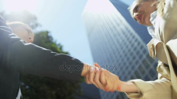 colleagues meeting with confident handshake