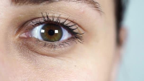 Makro obraz lidského oka s kontaktní čočkou. Ženský oči zblízka. Lidské oko s dlouhými řasami a řasenkou. Kosmetika a make-up.