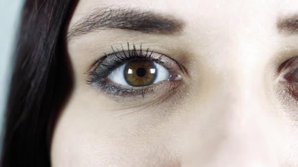 Macro image of human eye with contact lens. Womans eye close-up. Human eye with long eyelashes with mascara. Cosmetics and makeup.