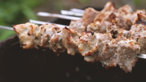 Zblízka opékaný shashlik na špejlích. šťavnaté grilování na grilu.