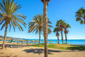 Fotografie Summer beach in Torremolinos