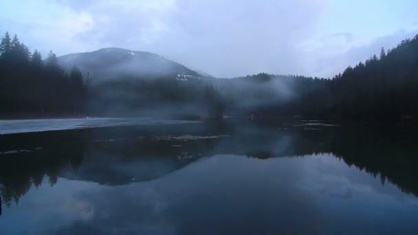Lago di nebbia e la foresta