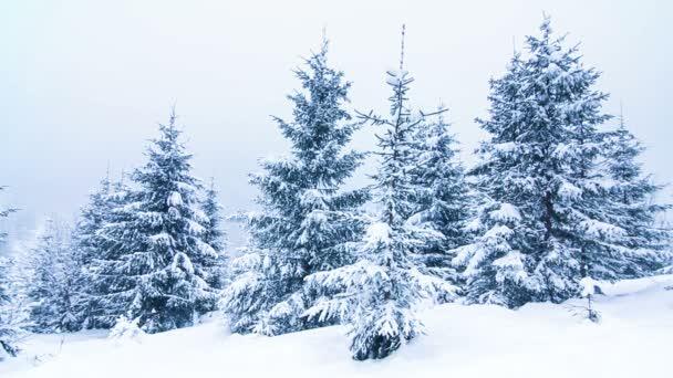 Krásná zimní krajina