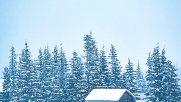 Schöne Winterlandschaft mit schneebedeckten Bäumen. Winterberge.