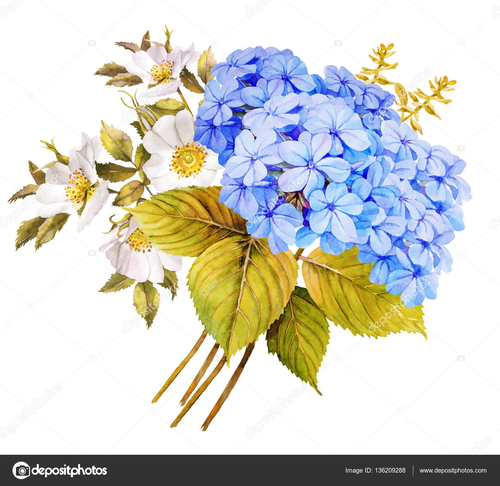 Blue white flower wedding bouquet watercolor hydrangea roses a blue white flower wedding bouquet watercolor hydrangea roses and blue jasmine illustration photo by anamad izmirmasajfo Image collections