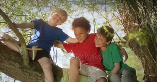 drei kleine Jungen umarmen sich, während sie auf einem Baum sitzen