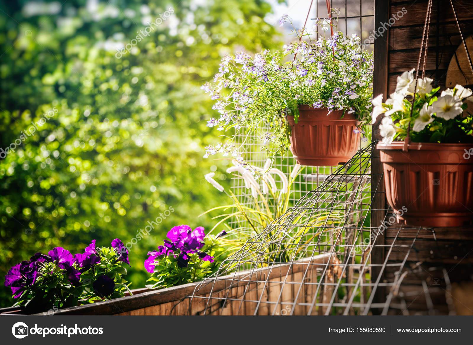 Vasi con i fiori sul balcone, un umore di sole estivo — Foto Stock ...