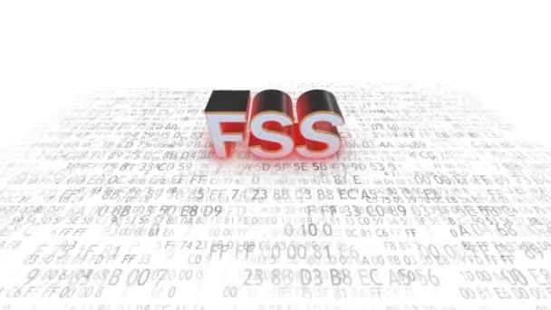 Bundessicherheitsdienst der Russischen Föderation. fss