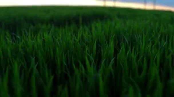 zemědělské půdy. Nádherný let nad polem farmy