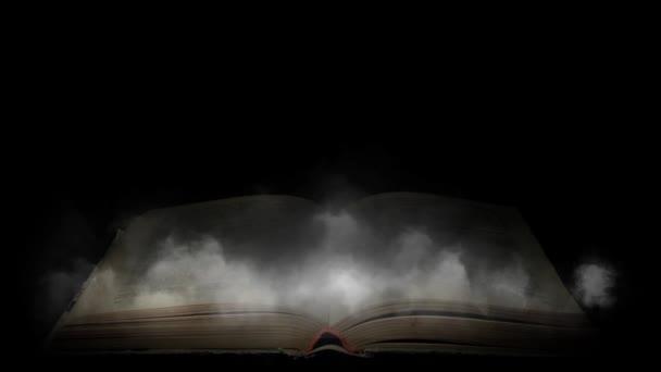 Kniha v mlze. Tajemný kouř obálce knihy