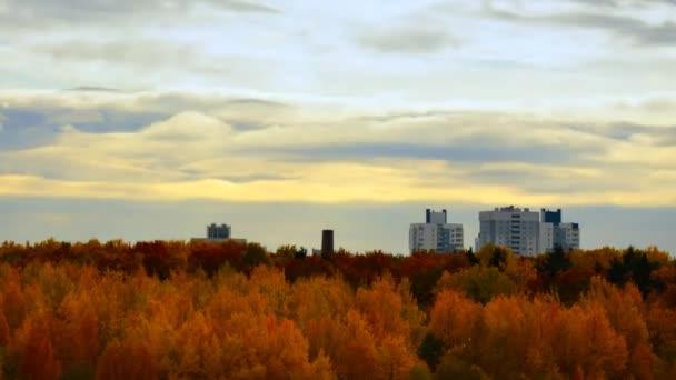 Lasso di tempo di autunno. Autunno nella città