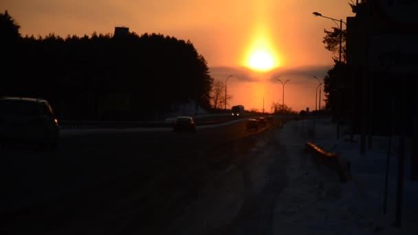Sunset over winter dear