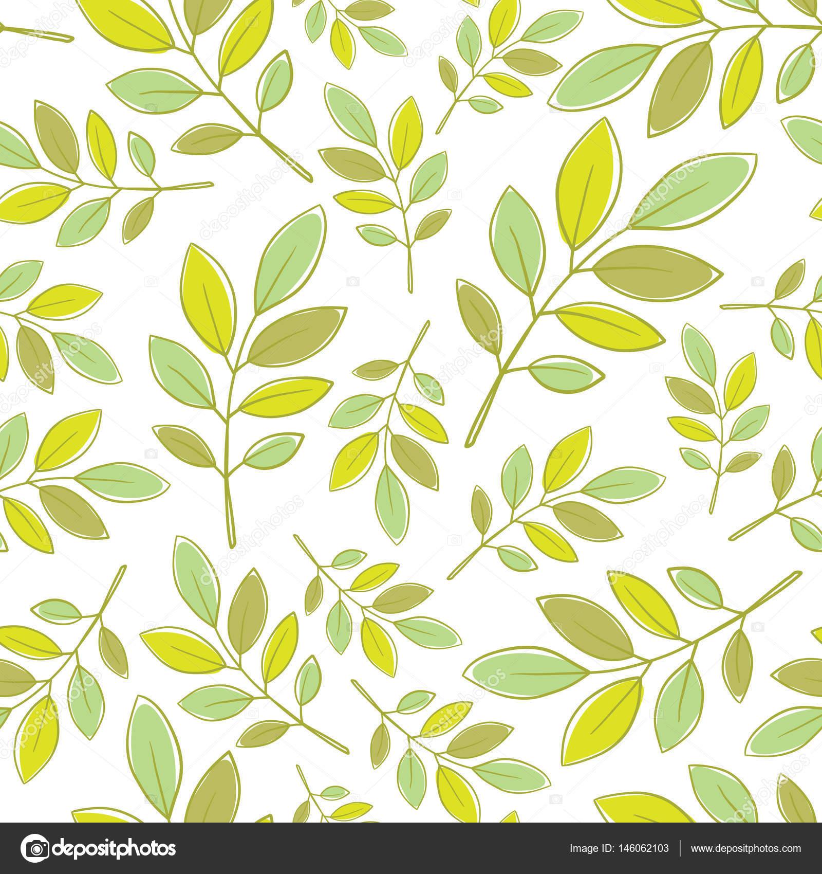 Patr n floral transparente con hojas decorativas de color - Fotos decorativas ...