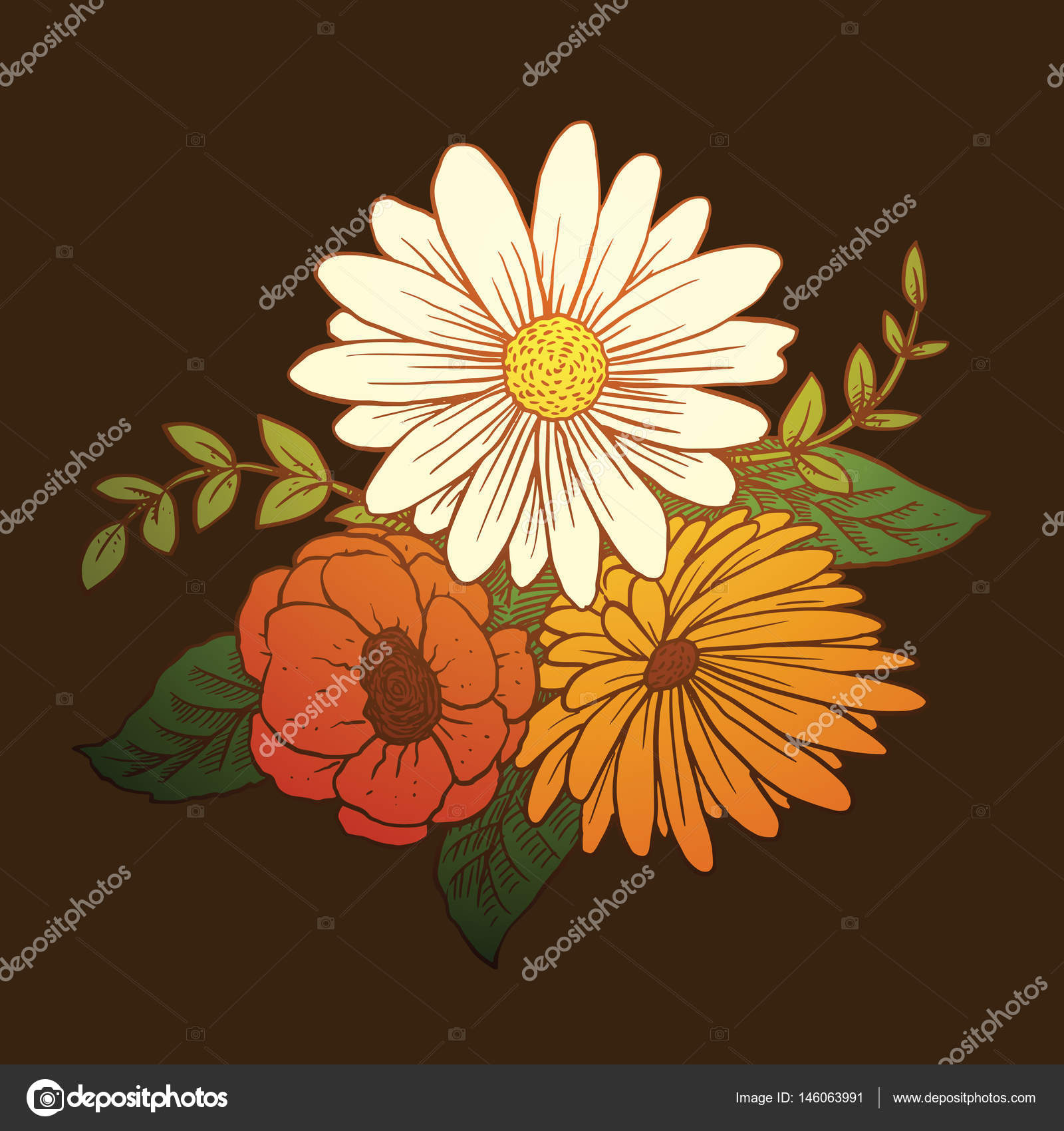 Bouquet daisies poppies chrysanthemum color image stock vector vector image of a beautiful bouquet of different types of flowers white daisies red poppies yellow chrysanthemum green leaves on a dark background izmirmasajfo