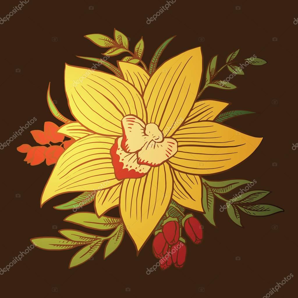 Bouquet: orchids, color image