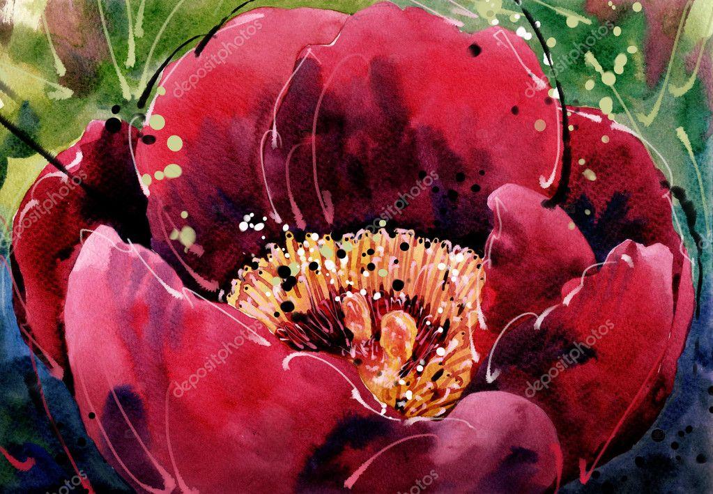 Lampada Fiore Tulipano : Pittura ad acquerello tulipani singolo rosso fiore macro u2014 foto