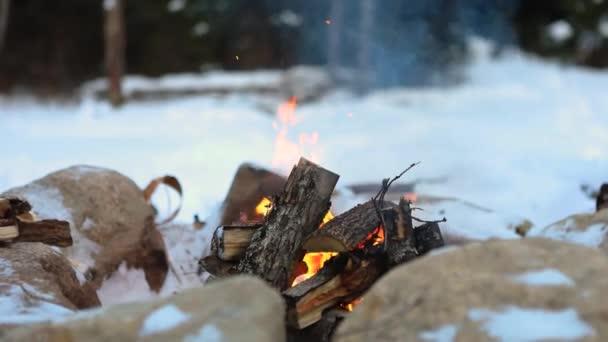 Mystical shaman walks by camp fire