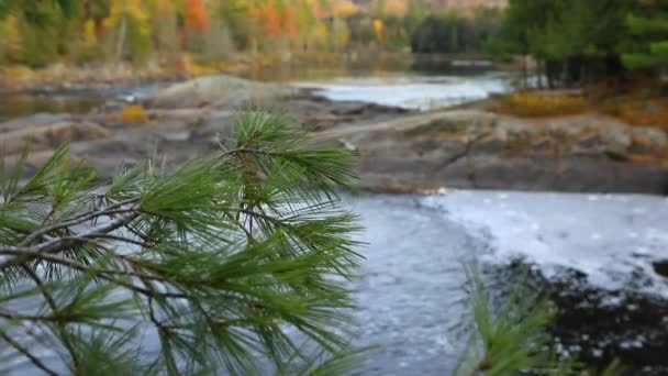 Tekoucí vody horské řeky