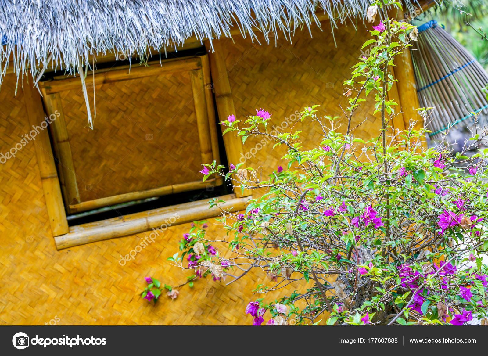 Een hoekige weergave van een rotan ommuurde hut met een blauwe