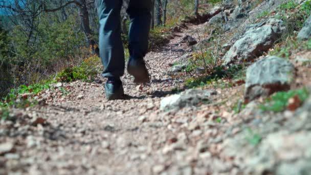 Beine eines Mannes in Turnschuhen laufen auf einem Fußweg im Wald.