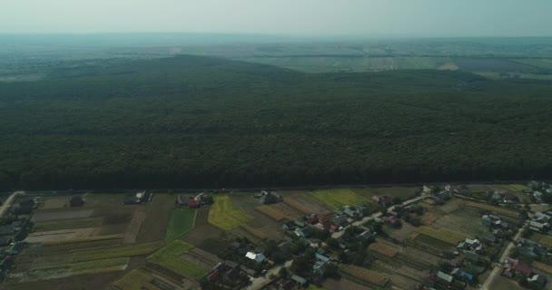 Schmale Straße trennt kleines Dorf und dichtes grünes Waldgelände.