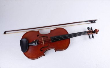 Violin and bow put on background,show detail of stringed instrument